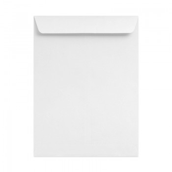 "White Envelope 10"" X 12"" 100GSM-250'S"